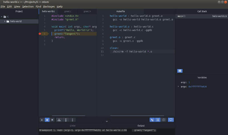Atom C debugger showing a breakpoint, variable values and debugger controls